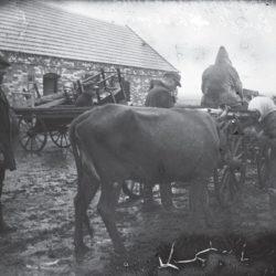 foto 26 250x250 - Малоизвестные фотографии Украины 1920-30-х годов