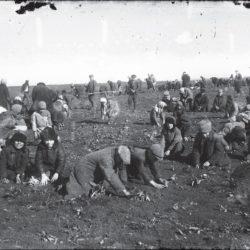 foto 7 250x250 - Малоизвестные фотографии Украины 1920-30-х годов