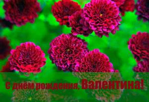 Соколова Валентина (Голдыш), день рождения
