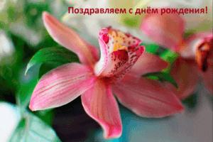 Парубец Ульяна, день рождения