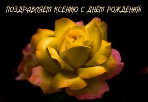 Гумма Ксения, день рождения