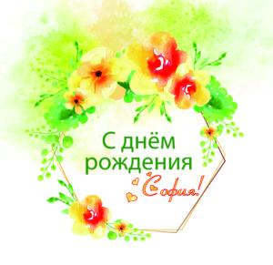 Александрова София, день рождения