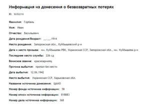 Informatsiya o bezvozvratnyh poteryah 300x210 - Мы помним о них!