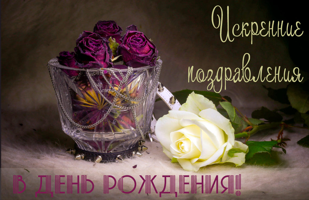 Gorban ekaterina s dnem rozhdeniya 1024x664 - Горбань Екатерина, с  днём рождения!