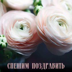 Поздравляем с  днем рождения, Ногина (Бойко) Екатерина!