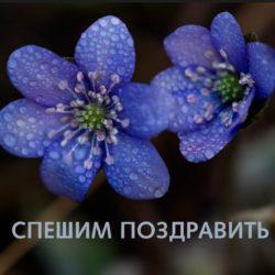 Дахно  Людмила (Демченко), c днём рождения!