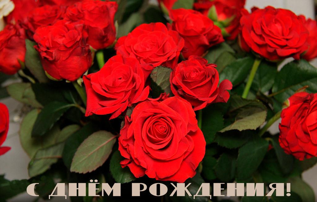 s dnyom rozhdeniya 1024x654 - Дахно  Людмила (Демченко), c днём рождения!