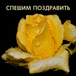 Гумма Ксения,  с днём рождения!