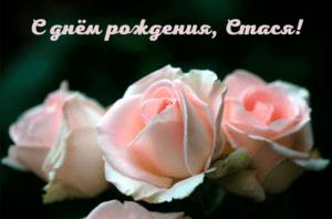 BeS dnyom rozhdeniya stasya 300x198 - Парубец Анастасия, с днём рождения!