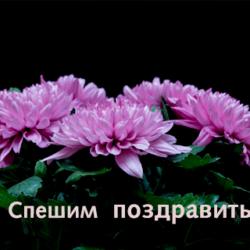 Ставицкая Светлана, с днём рождения!