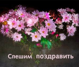Ногина (Бойко) Екатерина, день рождения